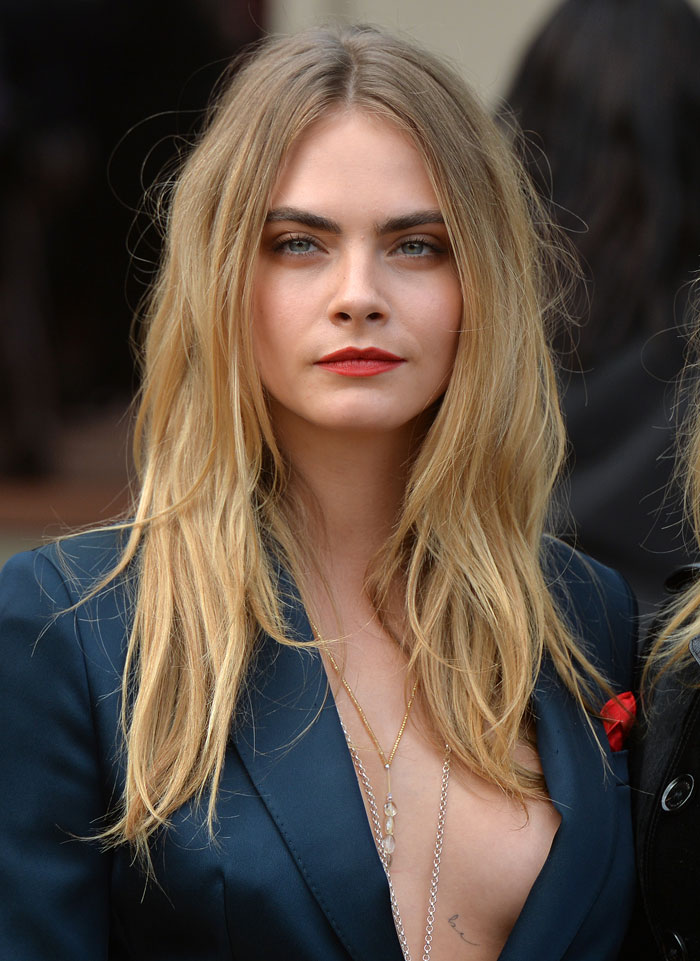 A photograph of Cara Delevingne who is a part of the mile high club